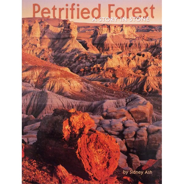 Petrified Forest: A Story in Stone