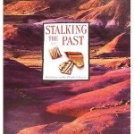 Stalking the Past: Prehistory at Petrified Forest