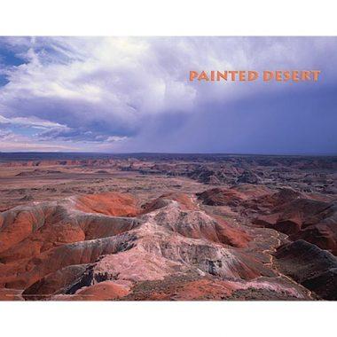 Painted Desert Poster