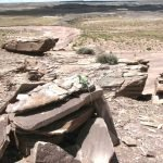 A large rock cairn with a Collared Lizard on it above a huge petroglyph site in the north part of the park | Photo courtesy of Petrified Forest National Park