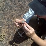 Finding fossils | Photo courtesy of Petrified Forest National Park