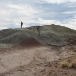 Prospecting for fossils in the new expansion area | Photo courtesy of Petrified Forest National Park