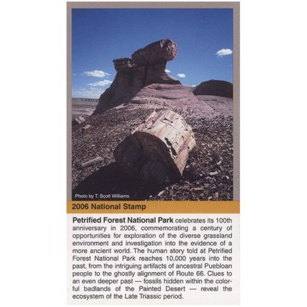 Petrified Forest National Park stamp included on stamp sheet