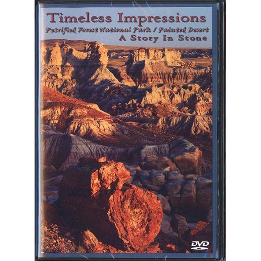Timeless Impressions: A Story in Stone