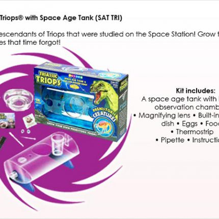 Triassic Triops Space Age Tank - contents