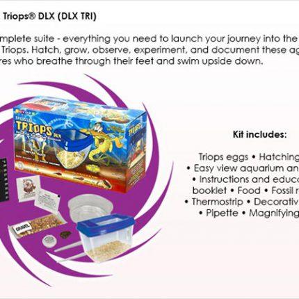 Triops Triassic DLX Contents