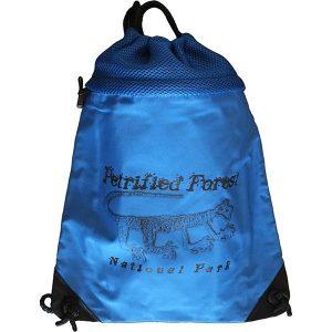 Mountain Lion Petroglyph Cinch Bag cinched up