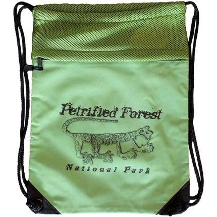 Mountain Lion Petroglyph Cinch Bag in Green