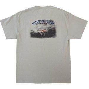 Coelophysis T-Shirt - Sage / Back View