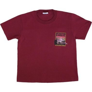 Petrified Forest Youth T-Shirt in Burgundy