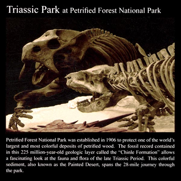 Triassic Park: Commemorative Sticker