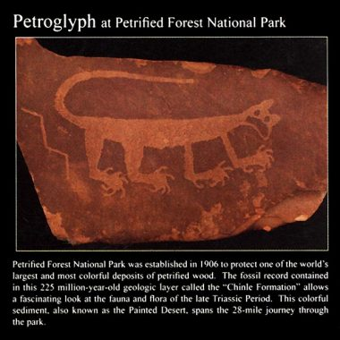 Mountain Lion Petroglyph: Commemorative Sticker