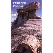 Pedestal Log Magnet