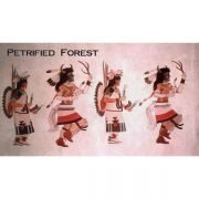 Buffalo Dancers Magnet