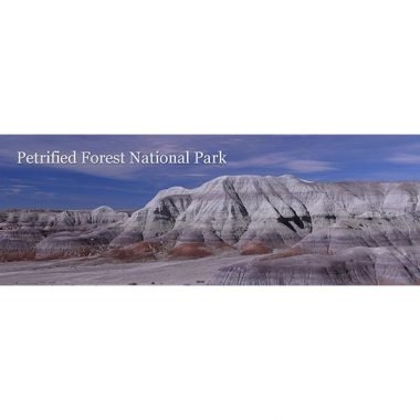 Petrified Forest Badlands Bookmark