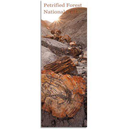 Badlands and Petrified Logs Bookmark
