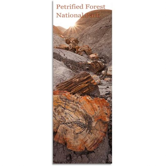 Badlands and Petrified Logs Bookmark