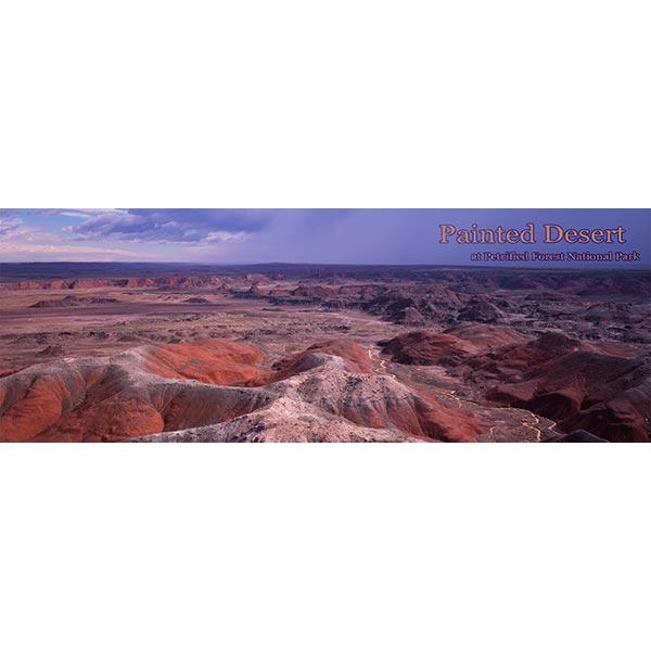Painted Desert Bookmark