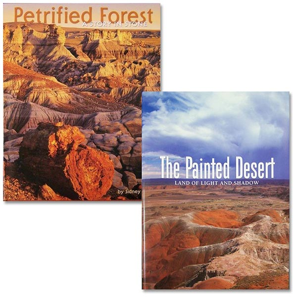 Petrified Forest: A Story in Stone/The Painted Desert: Land of Light and Shadow