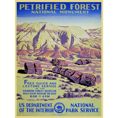 WPA Petrified Forest National Monument Postcard
