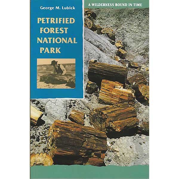 Petrified Forest National Park: A Wilderness Bound In Time