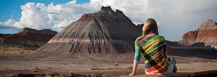 Faces of Petrified Forest National Park | NPS Photo by VIP Susan McElhinney