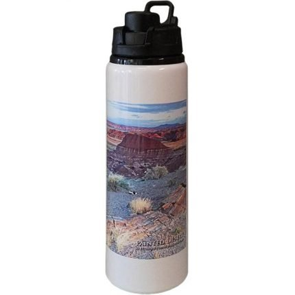 Painted Desert Postcard Photo Water Bottle