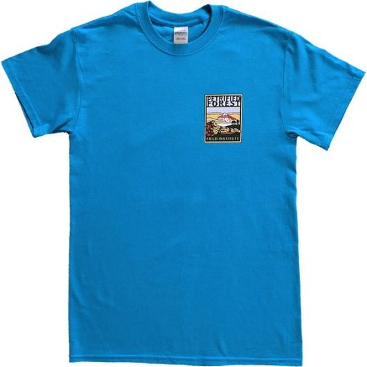 Field Institute T-Shirt - Bright Blue (Front)