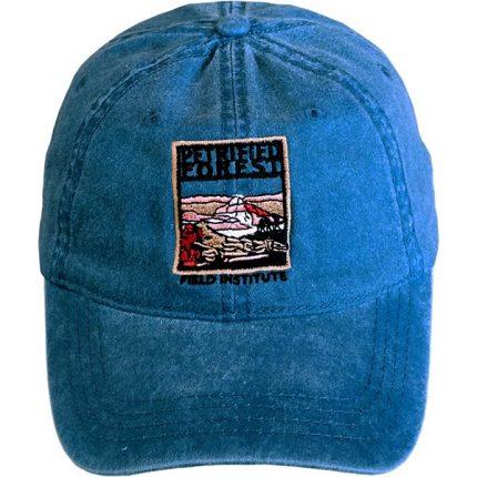 Petrified Forest Field Institute Cap - Denim Blue