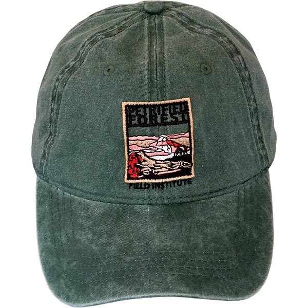 bec017ef3a9 ... Stonewashed Cotton Field Institute Baseball Cap. 🔍. Petrified Forest  Field Institute Cap - Forest Green