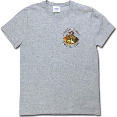 Dawn of the Dinosaurs T-Shirt - Heather Gray