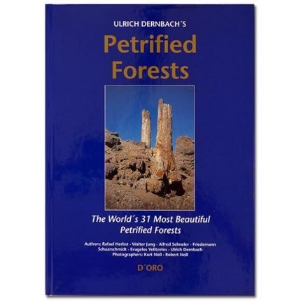 Petrified Forests: The World's 31 Most Beautiful Petrified Forests