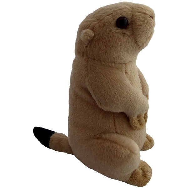 Prairie Dog Side View