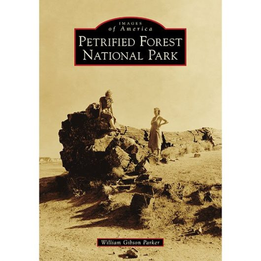 Images of America - Petrified Forest National Park