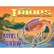 Triassic Triops Hanging Box