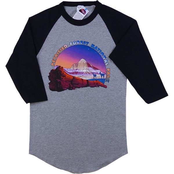 Baseball Raglan Heather T-Shirt in Black