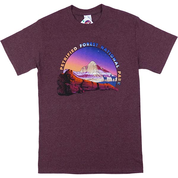 Petrified Forest T-Shirt in Heathered Maroon