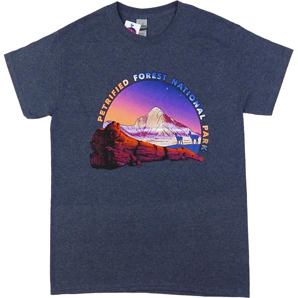 Petrified Forest T-Shirt in Heathered Navy