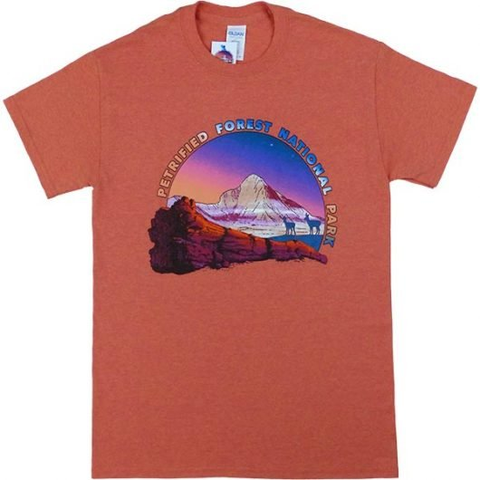 Petrified Forest T-Shirt in Sunset